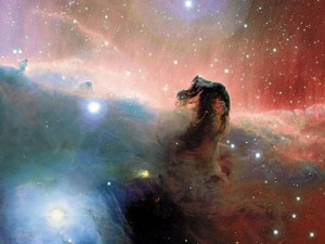 NASA's photo of the molecular cloud known as the horse head nebula.  Is this how a headshaking horse feels?
