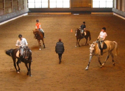 Working on the pirouette (or is it the turn on the haunches?) at the Reitschule Großhelfendorf bei München, courtesy of Andizo at the German language Wikipedia