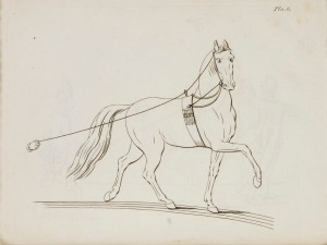lossy-page1-799px-Repro_ur_%22Military_Equitation%22_-_Livrustkammaren_-_86559.tif